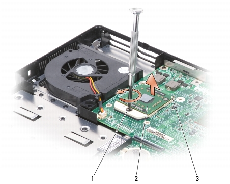 processor module dell inspiron 1501 service manual rh support feelpcs com Dell Laptops Dell Inspiron 1501 Problems